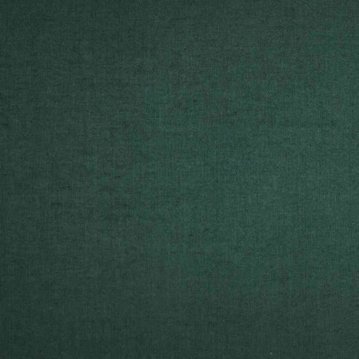 Pantalla de techo verde
