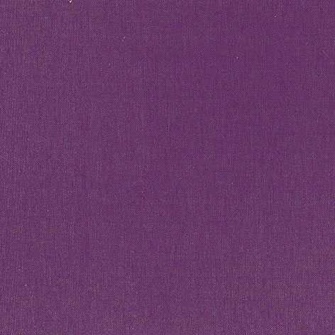 Pantalla de techo violeta